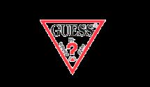 04 logo_guess-2