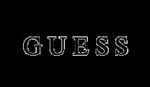 09 logo_guess-1