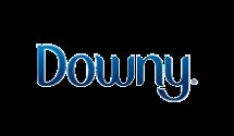 09logo_downy