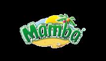 13 logo_mamba