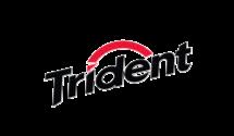 29 logo_trident